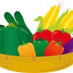 一人暮らしで不足しがちな野菜を健康的で家計に優しい取り方